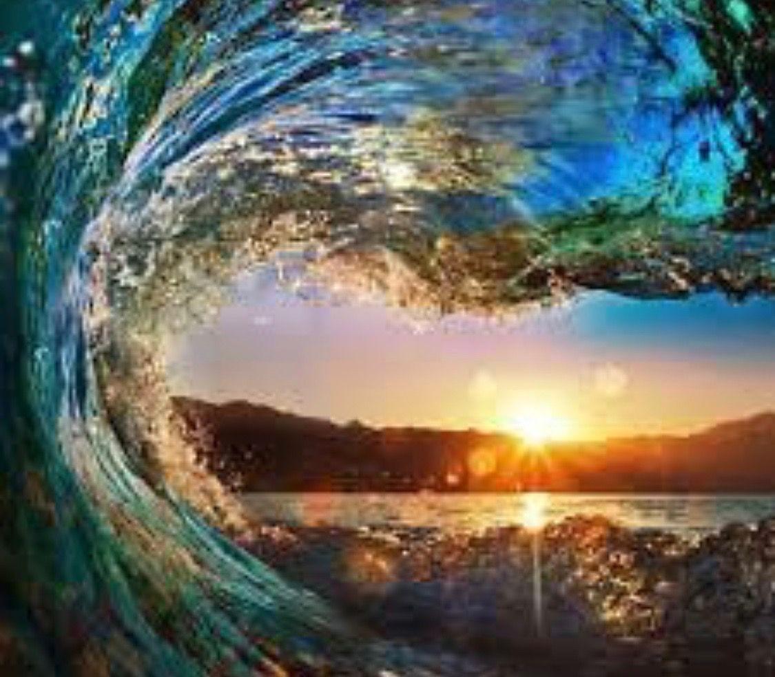 波 海 サーフィン 波の中 特別な視界 風景 庭作りのアイデア