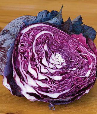 Cabbage Red Express D2076s Red 100 Organic Seeds By David S
