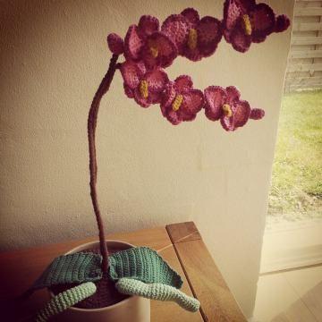 Hæklet orkidé