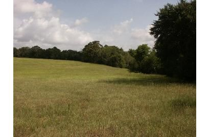 Cattle and Hunting land for Sale in Cherokee County, TX, Acreage