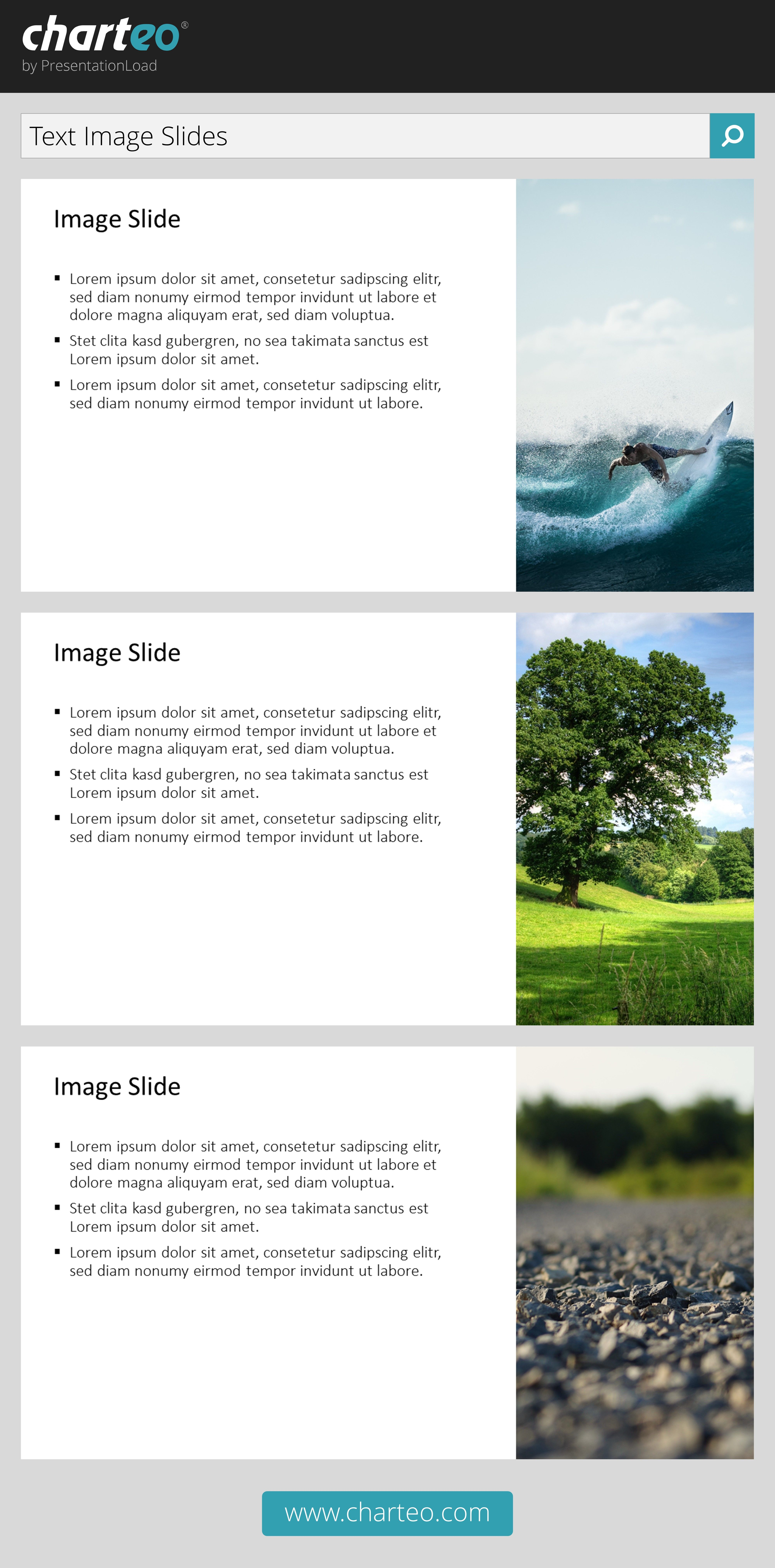 Give your PowerPoint presentation a vivid and modern