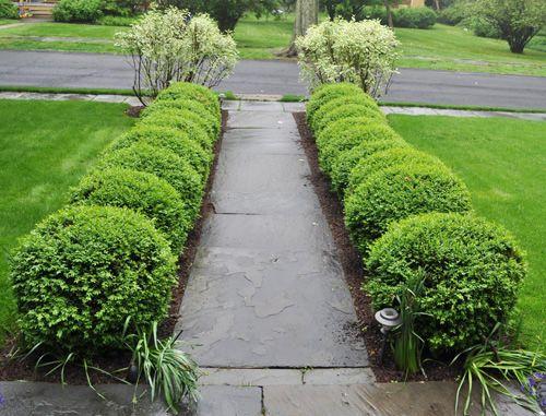 Katyelliott Com Slate Walkway Walkway Landscaping Front Yard Landscaping