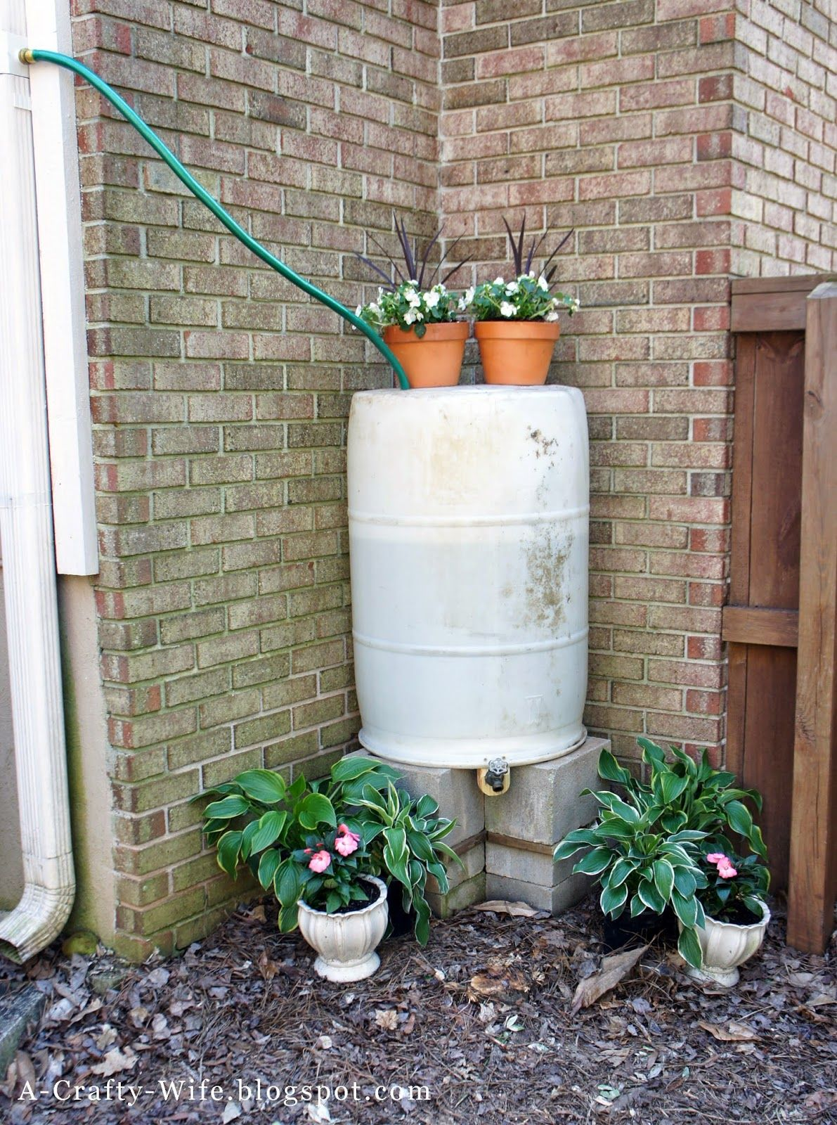 Make your own rain barrel to collect rainwater | A Crafty Wife; includes information on diverter