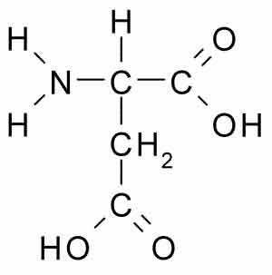 Testosteron Verhogen Met Kruiden En Supplementen Complete