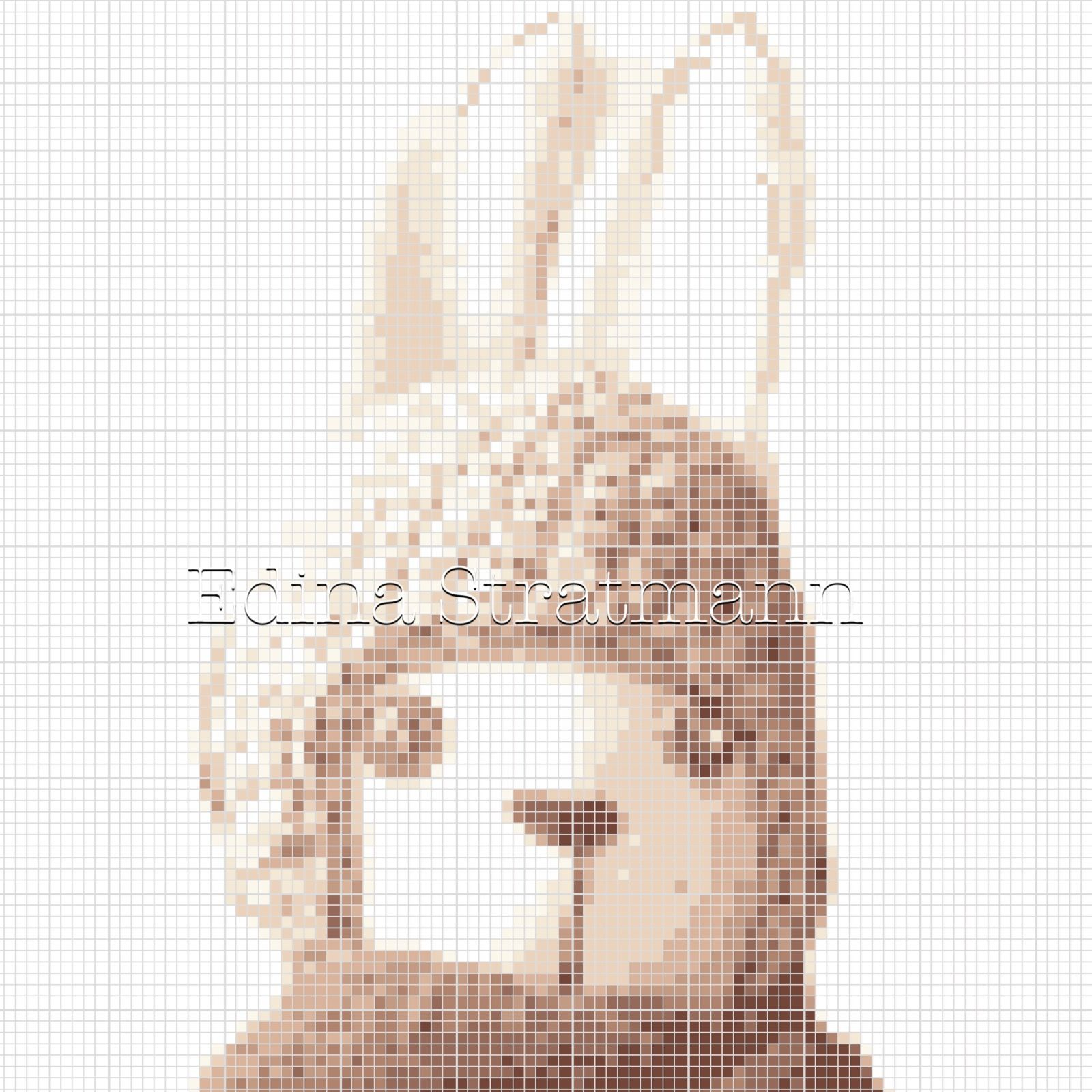 Kreuzstich Vorlage Hase Crossstitch Pattern Rabbit Quelle: http ...