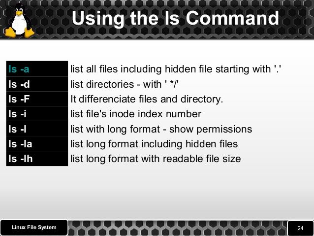 Using The Ls Command Linux File System L Ls Ls List With Long