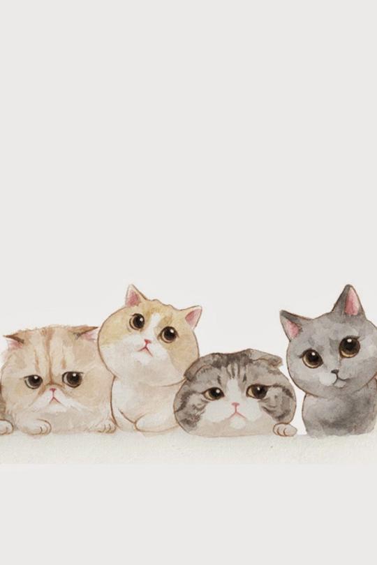 Papeis De Parede Para Celular Papel De Parede De Animais Gatos