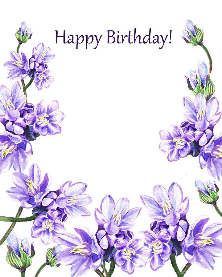 Happy Birthday Purple Flowers