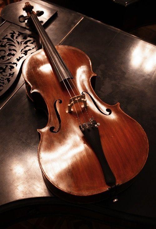 Pin De Brazil Fans Em Instrumentos Musicais Violoncelo Violino