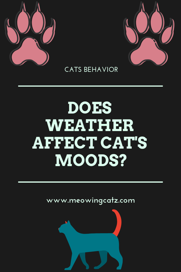 does weather affect mood