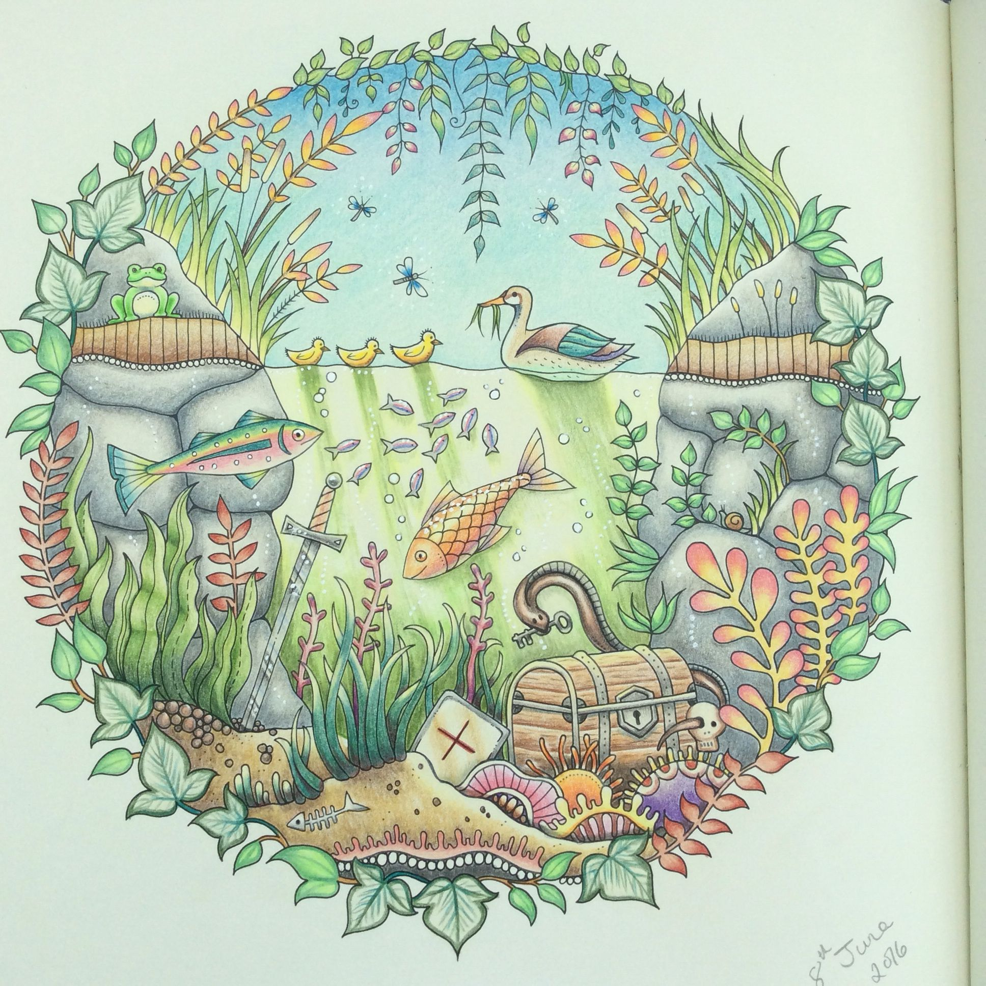Enchanted Forest Colouring Book Following The Fab Tutorial By Peta Hewitt