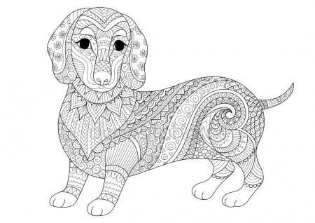 Zendoodle diseño de cachorro de perro salchicha para colorear libro ...