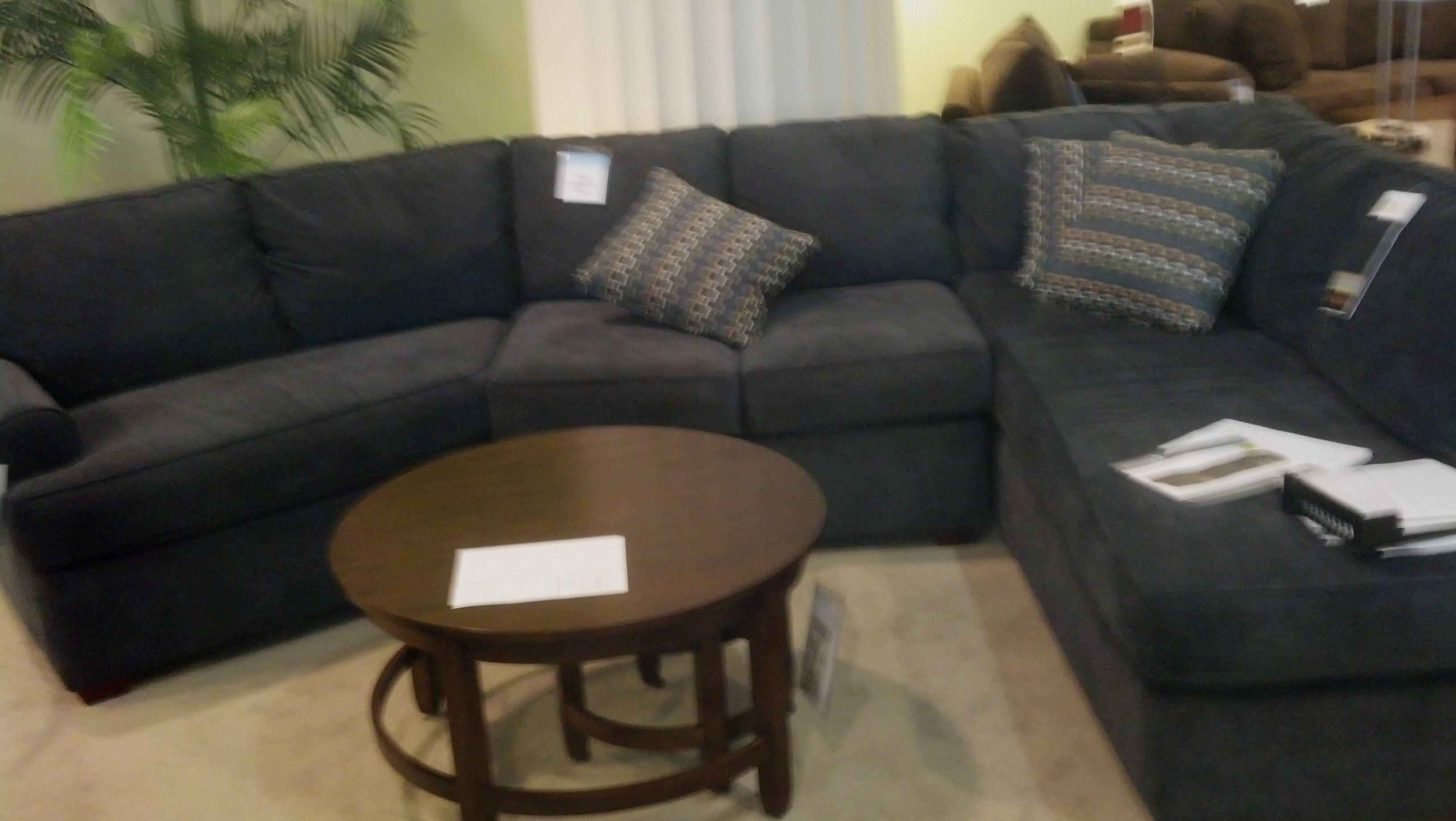 Family Room Sofa Option Kittles
