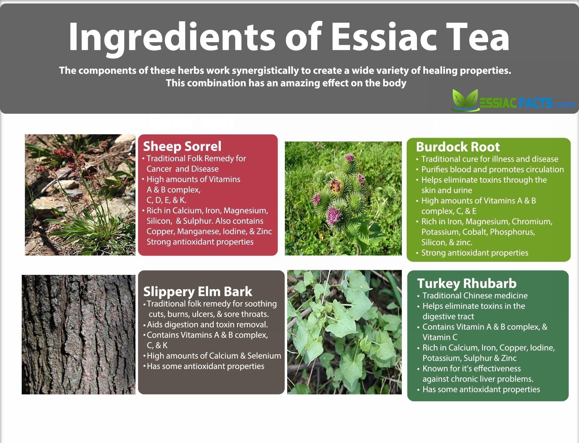 Cancer cure essiac herbal tea - Essiac Tea For Cancer Prevention