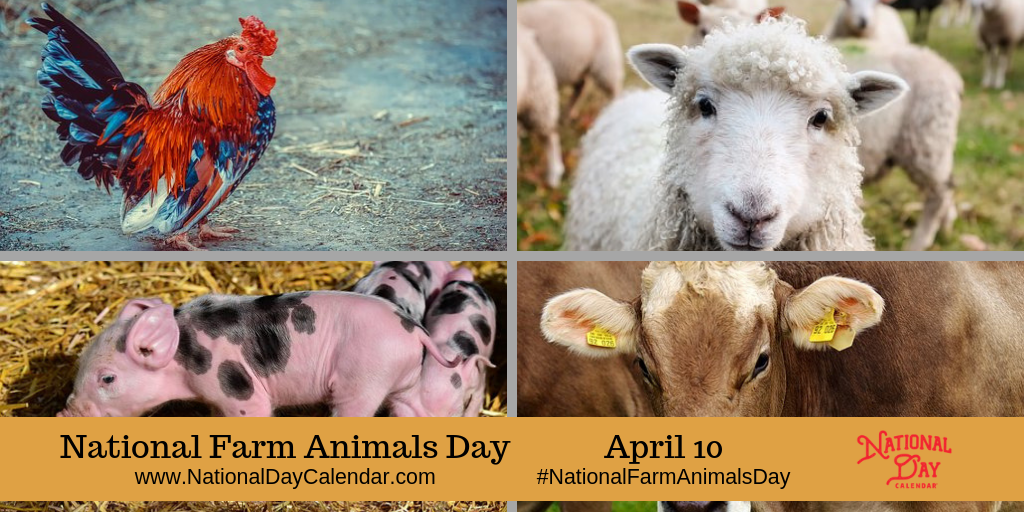 National Farm Animals Day April 10 National Day Calendar Pet Day Farm Animals Animals