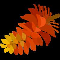デイゴの花やハイビスカスはもちろん沖縄のイラストなら何でもそろう