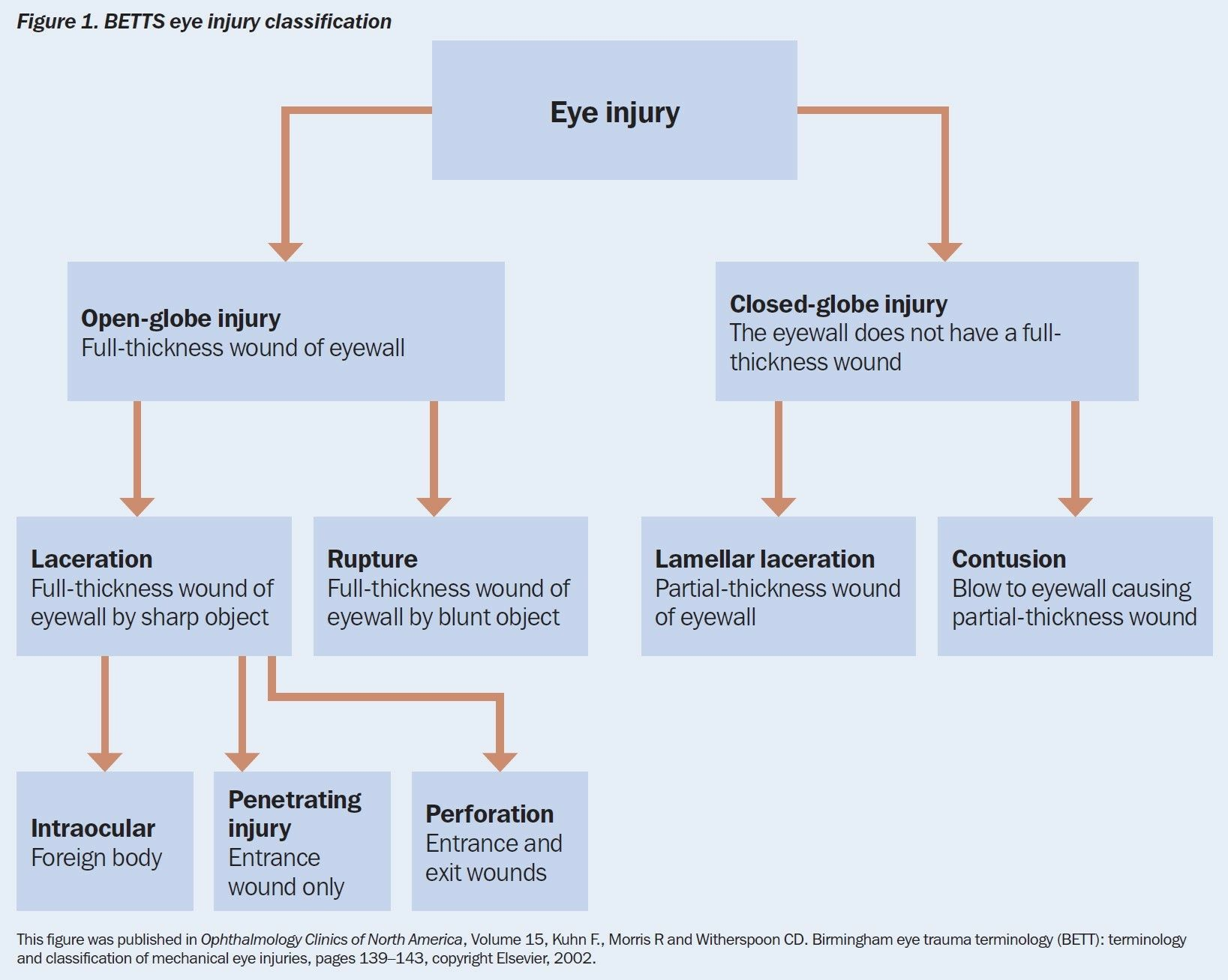 Bett System The Birmingham Eye Trauma Terminology System Bett Classification