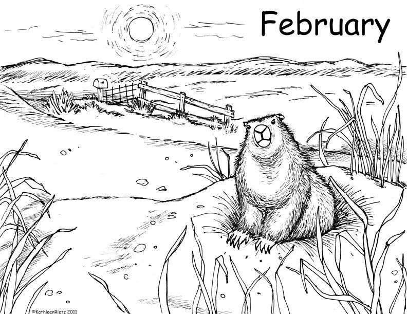 Groundhog Coloring Page Coloring Pages Nature