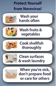How To Avoid Norovirus On Cruise Ships Infographic Healthy - Cruise ship norovirus