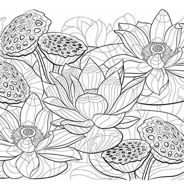 Manny Young Mannyyoungartist Instagram Photos And Videos Lotus Art Flower Line Drawings Pop Art Wallpaper