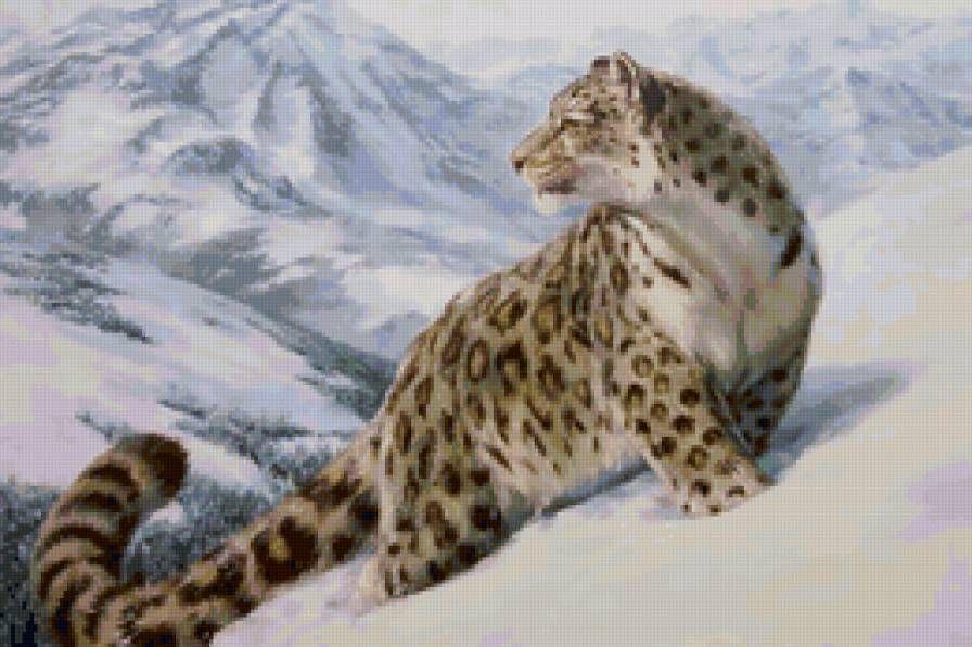 снежный барс - Схемы вышивки - Circeia - Авторы - Портал «Вышивка крестом»