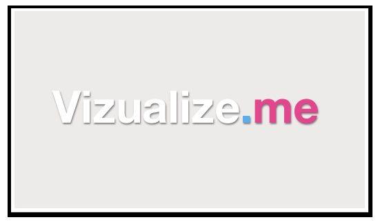 Mijn CV grafisch weergegeven  via Vizualize.me  #johantadema