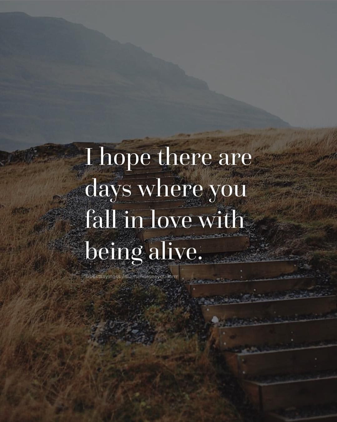 I Hope There Are Days That You Fall In Love With Being Alive
