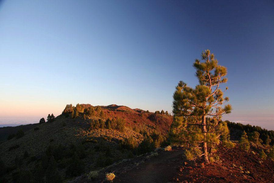 La Palma Aktuell - Bildergalerie La Palma Fotos von Kai Stockrahm aus dem Jahr 2014