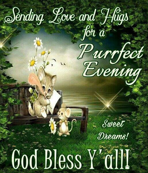 9876* Sending Love and Hugs for a Purrfect Evening! God Bless Y'all! | Good evening messages, Good night blessings, Good night prayer
