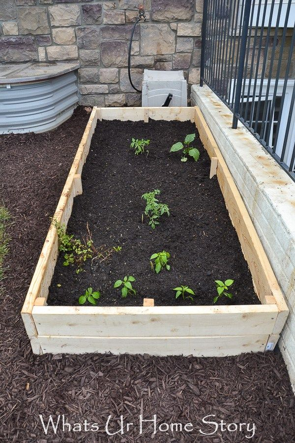 Vegetable Bed Update Whats Ur Home Story Building a
