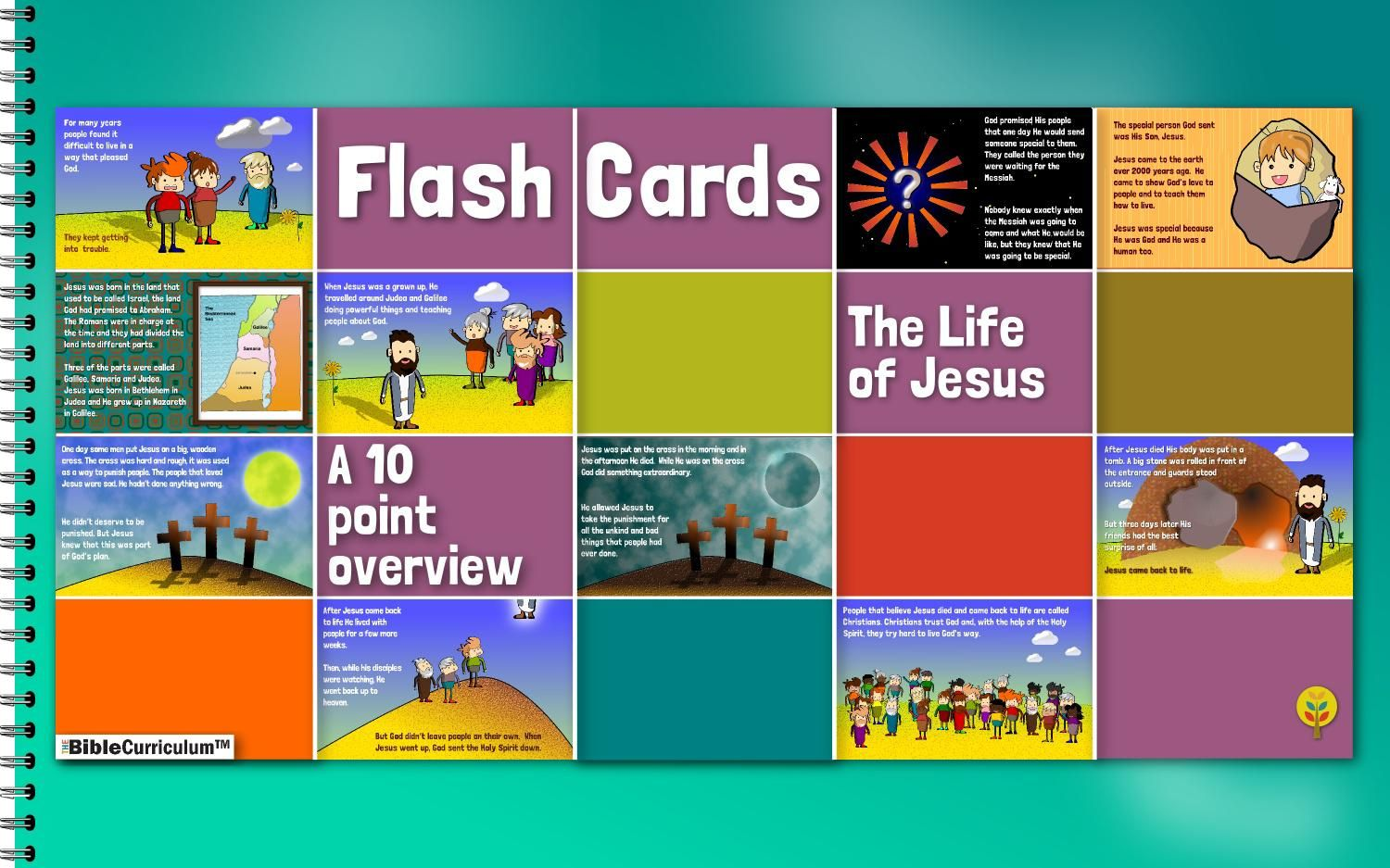 The Life Of Jesus Flash Cards Jesus Lives Bible Curriculum Flashcards