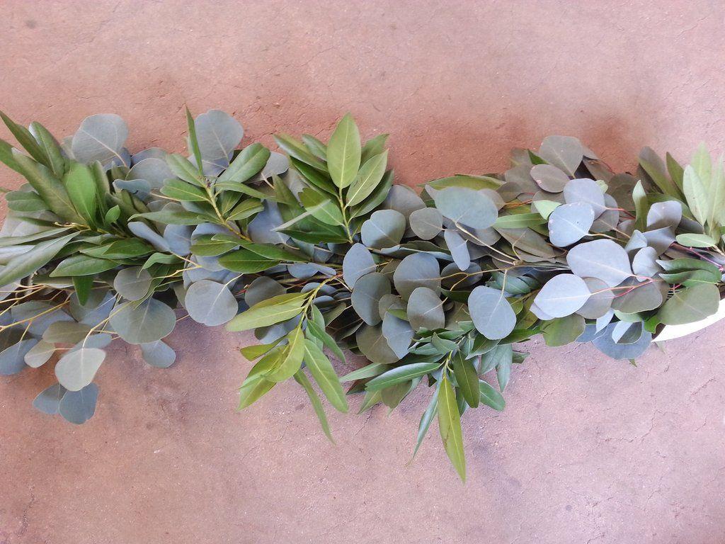 Silver Dollar Eucalyptus And Bay Leaf Garland Leaf Garland Eucalyptus Garland Wedding Flower Guide
