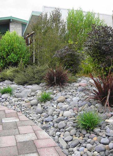 Native Nz Plants Colour Garden Designer Nzlandscapes Land Flickr Garden Landscape Design Garden Design Native Garden