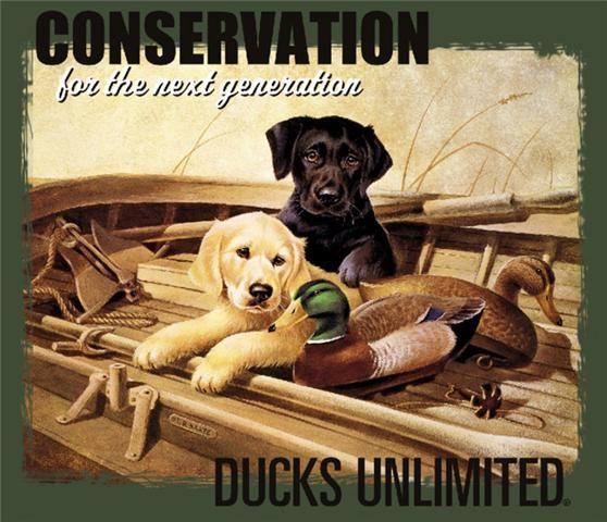 Ducks Unlimited Home Decor: Ducks Unlimited T-Shirt Next Generation Lab Puppies NWT