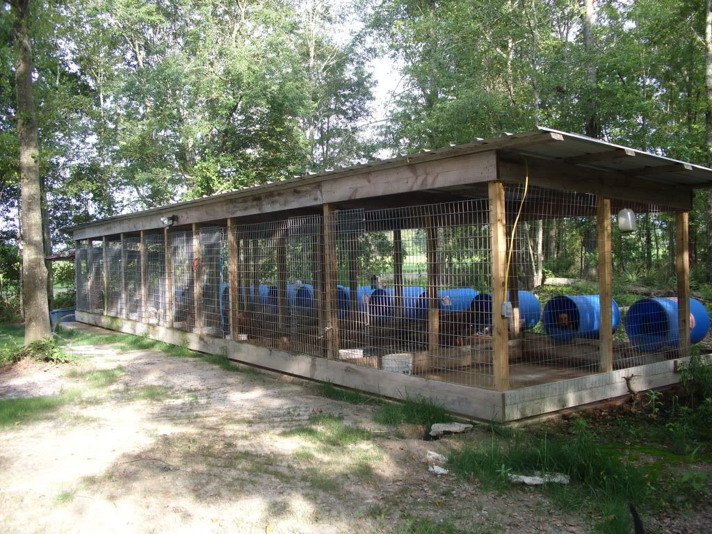Post pictures of your dog pen georgia outdoor news forum for Breeding kennel designs