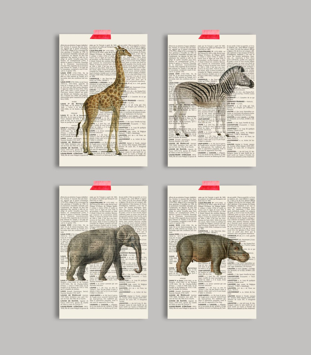 lot de 4 cartes postales d corative safari jungle format 10x15 cartes postales design. Black Bedroom Furniture Sets. Home Design Ideas