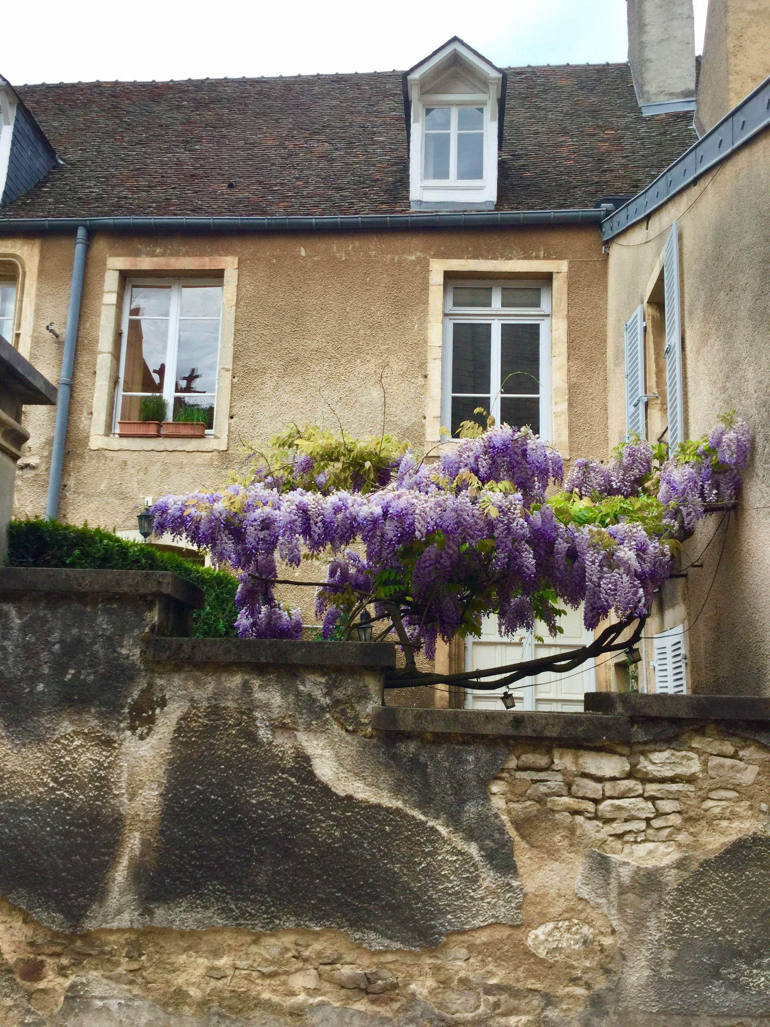 Beaune France Hotel Le Cep