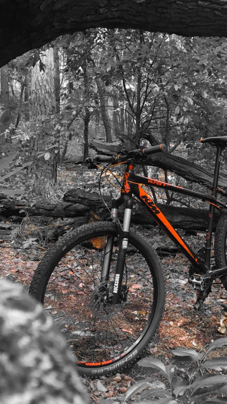 épinglé par adam kozłowski sur bicycle phone wallpapers bicycle vehicles et sports