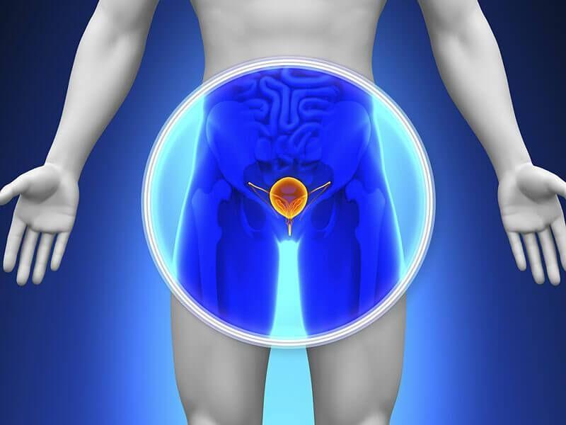 Każdy mężczyzna powyżej 50. roku życia (lub, gdy w rodzinie występował ten rak, to powyżej 40. lub 45.), powinien systematycznie wykonywać badanie #USG układu moczowego.