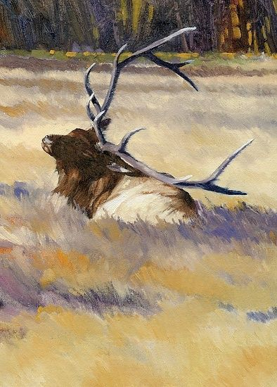 Yellowstone Elk by Joe Garcia Oil ~ 12 x 9 | Art - Wildlife - Deer