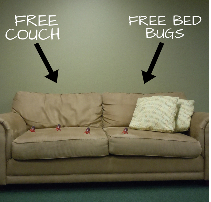 Nice #PestControlTip: Check Every Inch Of Used Furniture Before You Bring It Home!  You