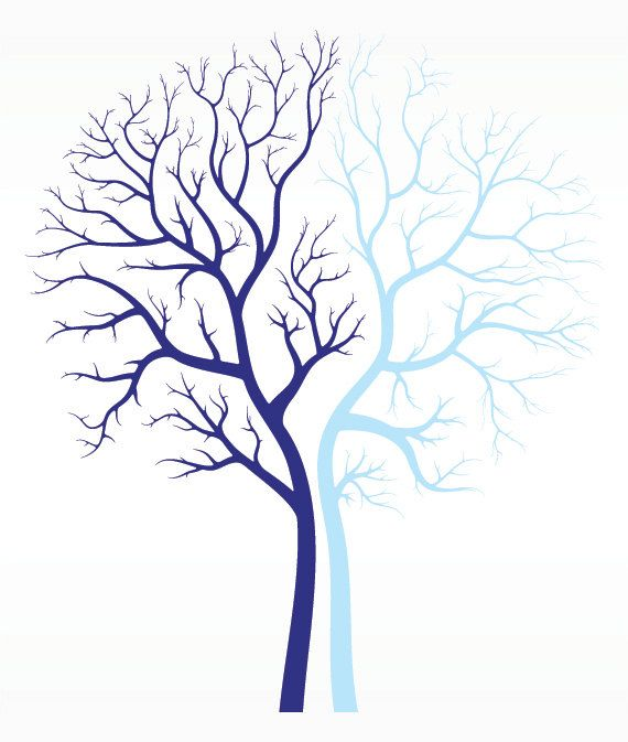 Large Fall Winter Tree Branches Decal for Home, Dorm, Office