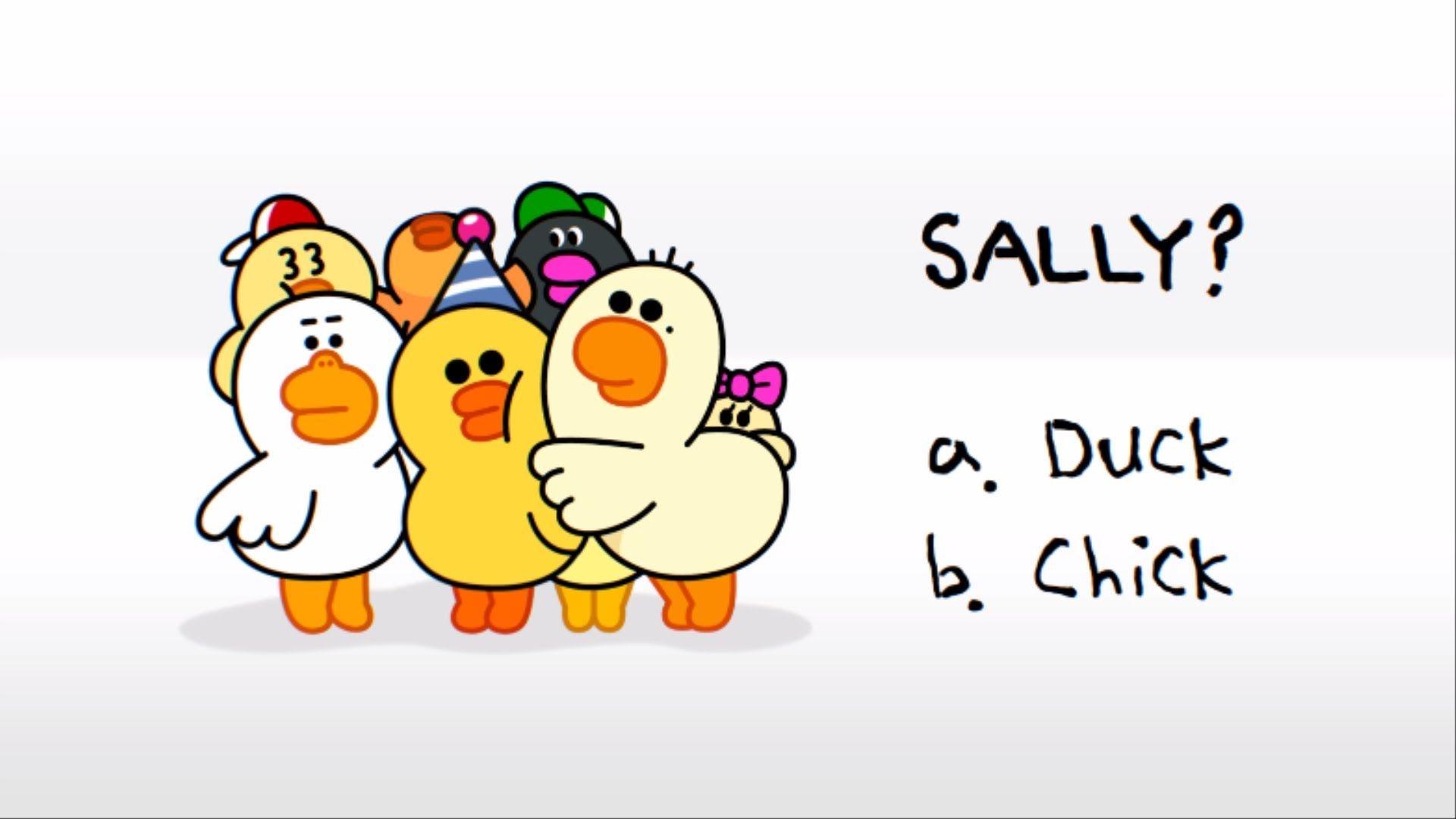 Line Friends Happy Birthday Sally Koreanjapanese Characters