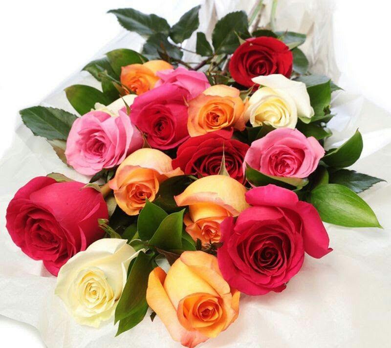 Pin By Maha Alrim On صباح الورد Pinterest Fleurs