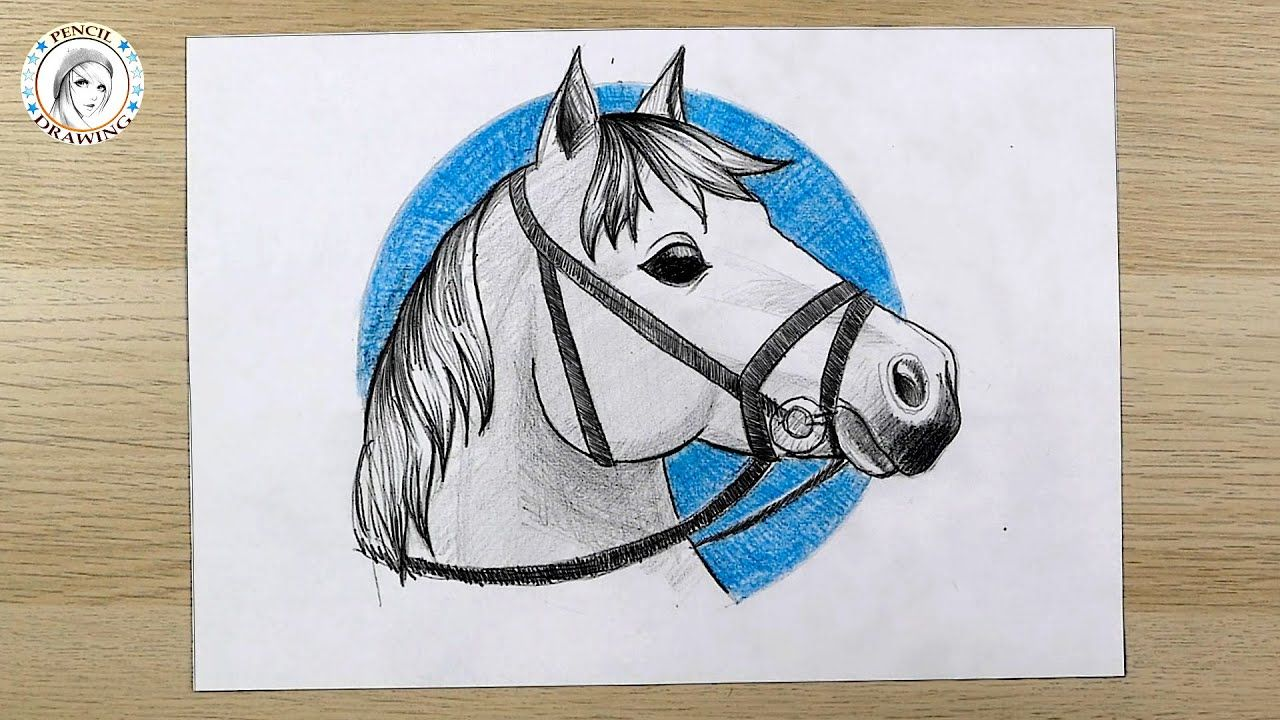 How To Draw A Horse Step By Step Horse Drawing Easy رسم سهل للمبتدئي In 2021 Drawing For Beginners Horse Drawing Pencil Drawings