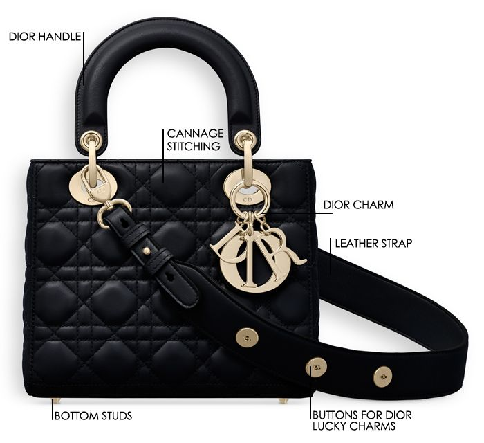 e05cf2fc627 My Lady Dior Bag Review – Vauntr | Christian Dior in 2019 | Lady ...