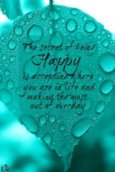 Being Happy Quote Via Living Life At Www Facebook Com Kimmberlyfox