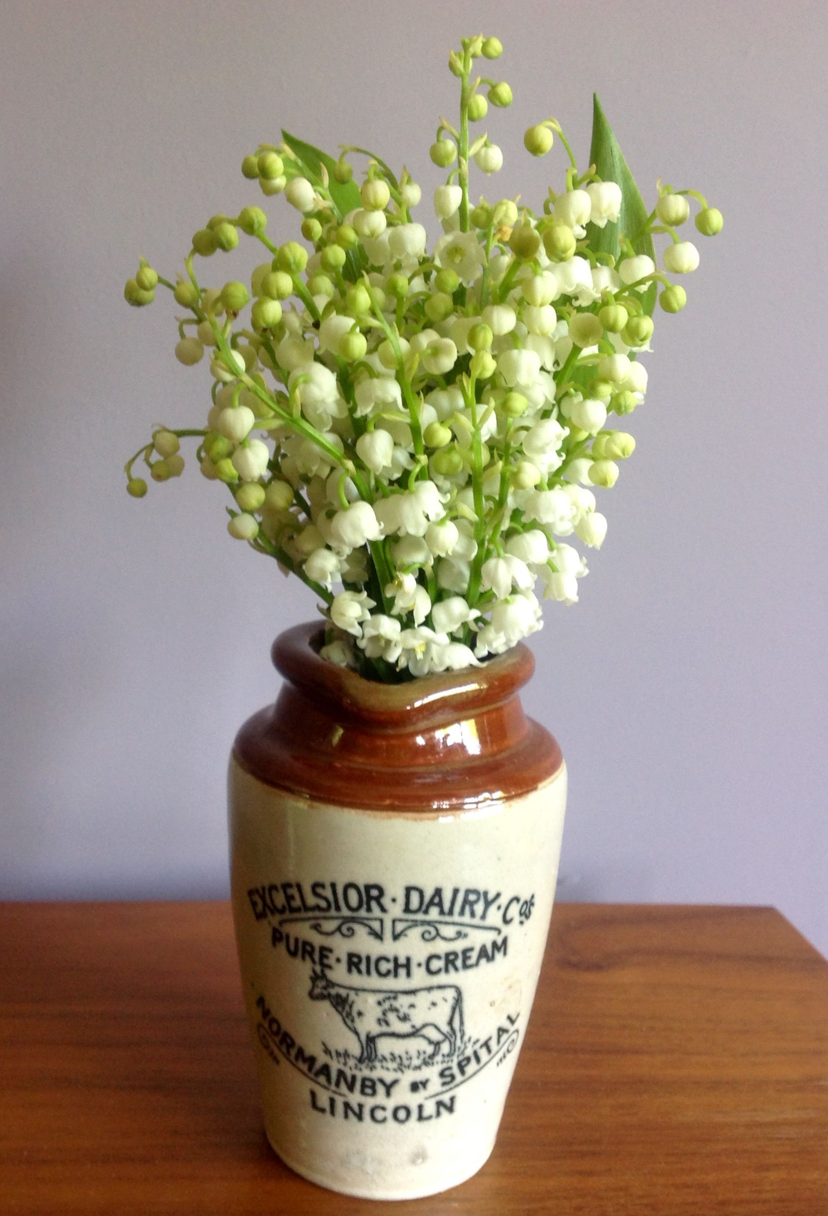 I Love Lily Of The Valley My Favorite Flower Pinterest
