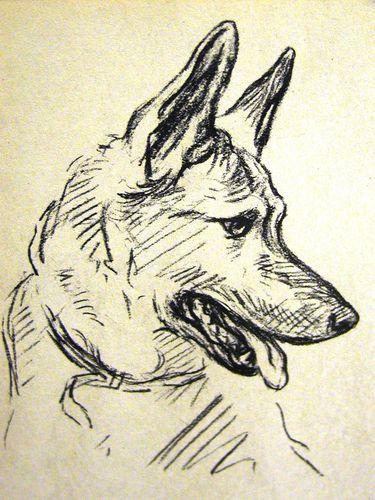 Simple y bonito. | Animales | Pinterest | Pintura perro, Arte y Perros