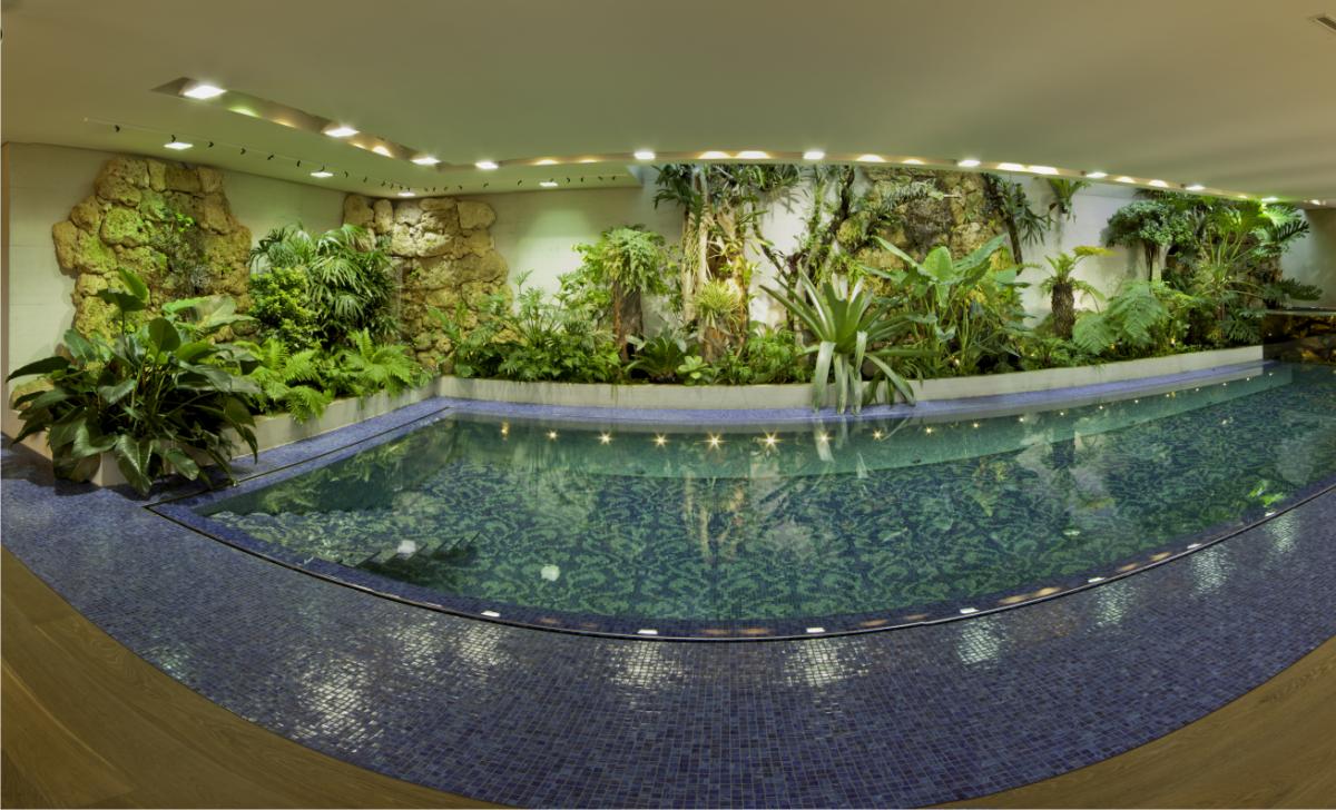 Zurich aquarium freshwater fish tank maintenance 8 for 10000 gallon fish tank